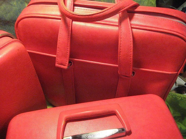 Red Travel Luggage Set