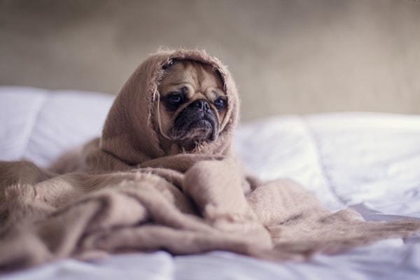 Jetlag symptomer kan være træthed