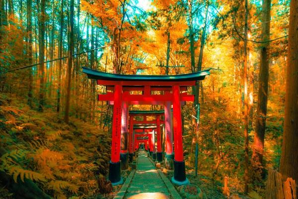 vista autunnale in Giappone