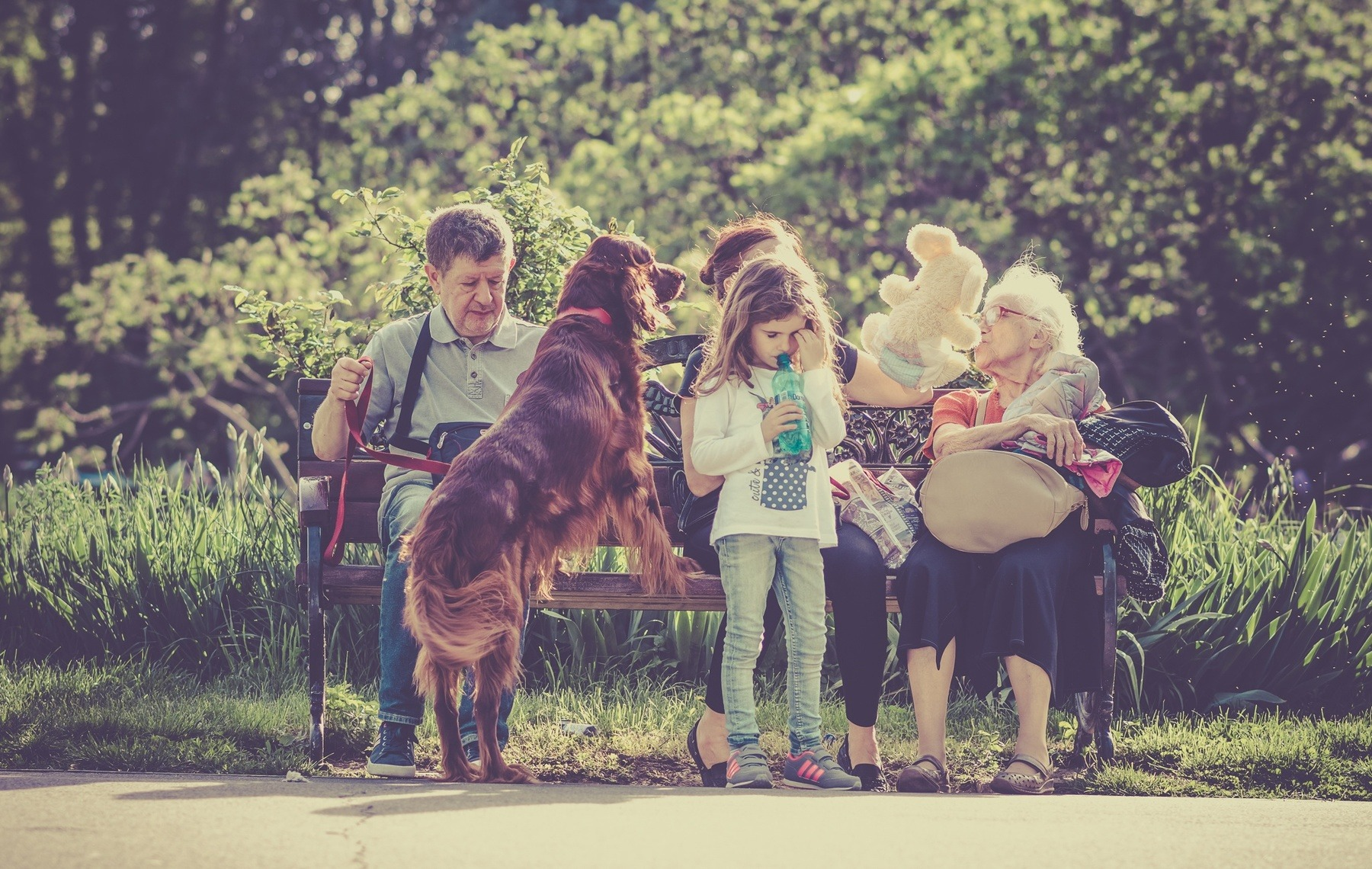 Family with dog on park bench